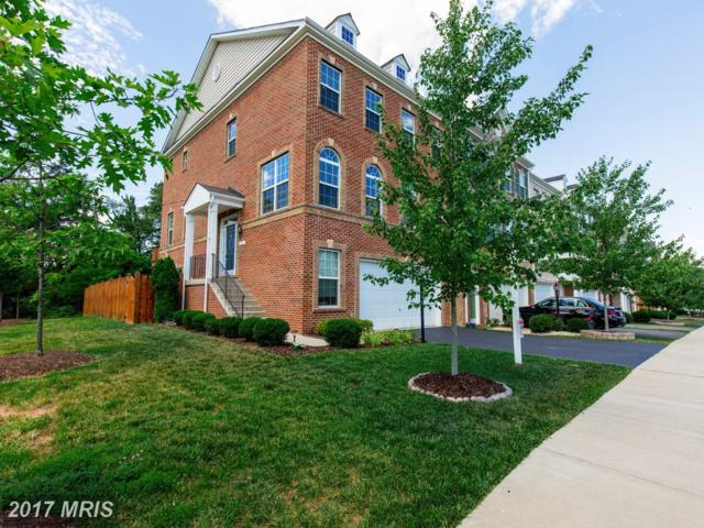 1799 Moultrie Terrace Ne, Leesburg, VA 20176 (#LO9990611) :: Pearson Smith Realty