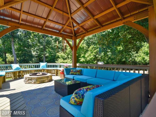 10812 Monticello Drive, Great Falls, VA 22066 (#LO9990663) :: LoCoMusings