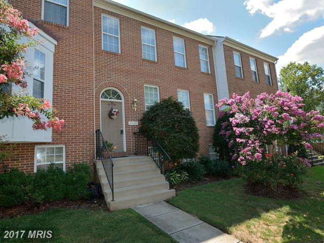 21156 Millwood Square, Sterling, VA 20165 (#LO9998098) :: Pearson Smith Realty