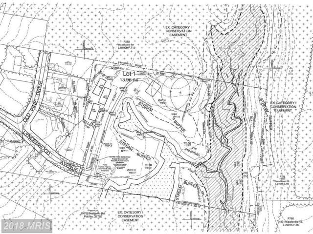 19701 Lyndenwood Avenue, Poolesville, MD 20837 (#MC10011093) :: The Bob & Ronna Group
