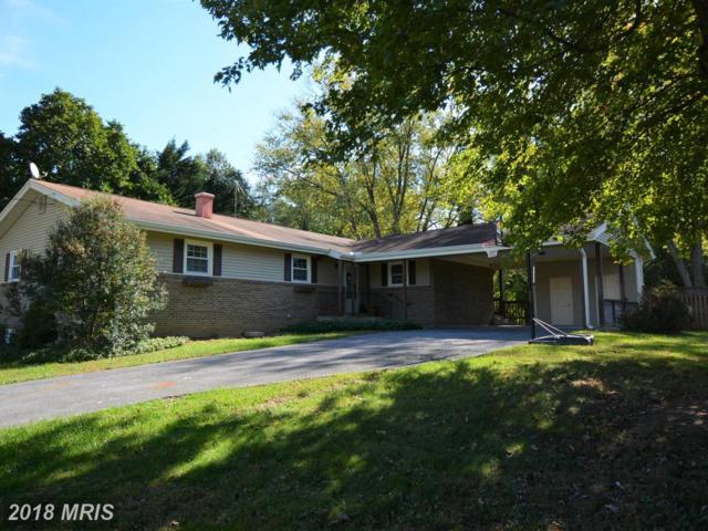 209 Paula Lynn Drive, Silver Spring, MD 20904 (#MC10064502) :: Pearson Smith Realty