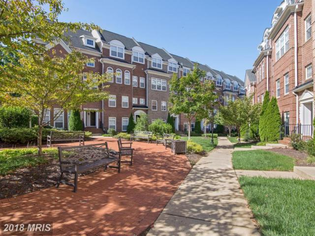 13612 Dover Cliffs Place #13612, Germantown, MD 20874 (#MC10064810) :: Pearson Smith Realty