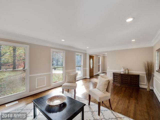 11301 Classical Lane, Silver Spring, MD 20901 (#MC10092022) :: Pearson Smith Realty