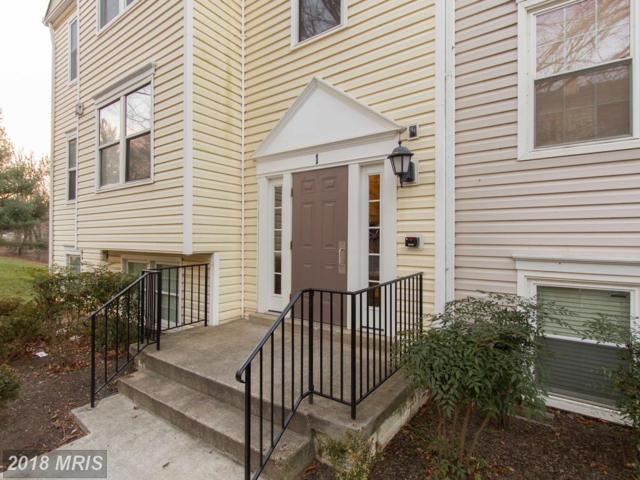 1 Pickering Court #202, Germantown, MD 20874 (#MC10117496) :: Pearson Smith Realty