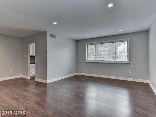 11505 Amherst Avenue #4, Silver Spring, MD 20902 (#MC10201614) :: Provident Real Estate