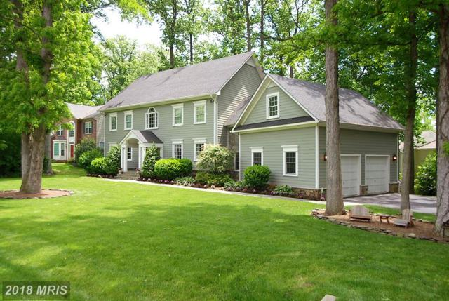4904 Norbeck Road, Rockville, MD 20853 (#MC10219165) :: The Bob & Ronna Group