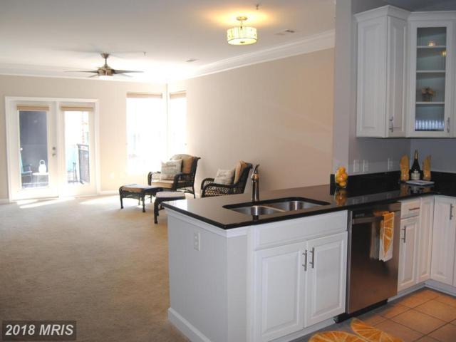 501 Hungerford Drive #346, Rockville, MD 20850 (#MC10228208) :: Keller Williams Pat Hiban Real Estate Group