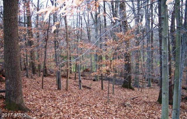 12308 Stoney Creek Road, Potomac, MD 20854 (#MC9614998) :: LoCoMusings