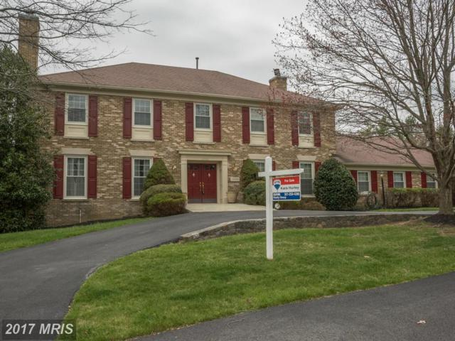 14508 High Meadow Way, North Potomac, MD 20878 (#MC9908300) :: LoCoMusings