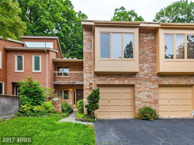 7821 Whiterim Terrace, Potomac, MD 20854 (#MC9950338) :: LoCoMusings