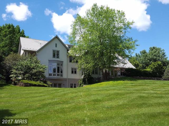 11613 Luvie Court, Potomac, MD 20854 (#MC9953335) :: Pearson Smith Realty