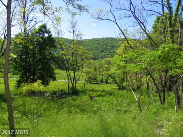 Nancy Hanks, New Creek, WV 26743 (#MI8059708) :: LoCoMusings