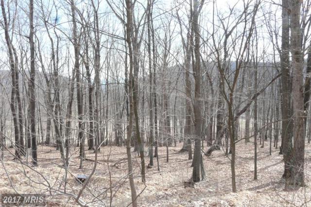 Joseph Hanks Drive, New Creek, WV 26743 (#MI9559229) :: LoCoMusings