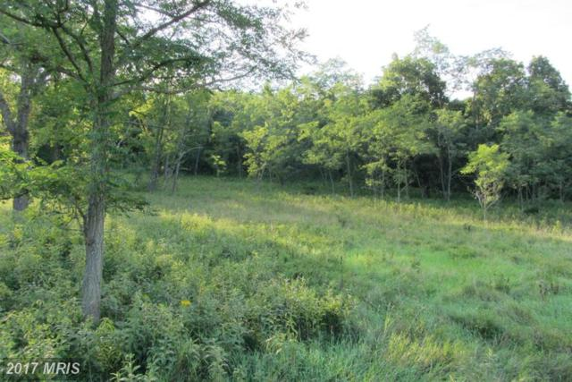 Nancy Hanks Drive, New Creek, WV 26743 (#MI9748995) :: LoCoMusings