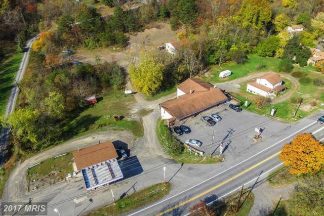 0 Route 1 Box 56 Route 28, Ridgeley, WV 26753 (#MI9799972) :: Pearson Smith Realty