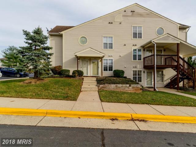 9373 Scarlet Oak Drive #2, Manassas, VA 20110 (#MN10114049) :: Pearson Smith Realty