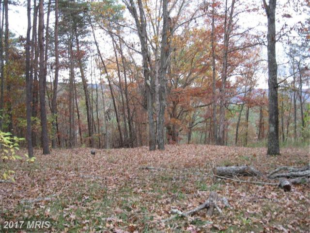 11 Hollow View Road, Berkeley Springs, WV 25411 (#MO9802685) :: Pearson Smith Realty