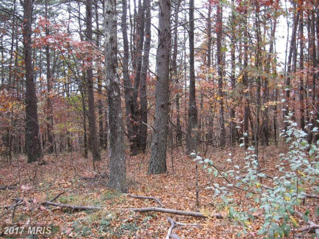 15-16 Hollow View Road, Berkeley Springs, WV 25411 (#MO9802697) :: Pearson Smith Realty