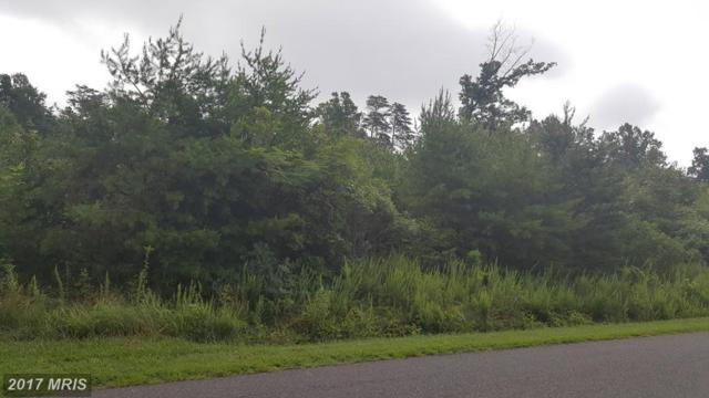 Madison Run Road, Gordonsville, VA 22942 (#OR9718691) :: Pearson Smith Realty