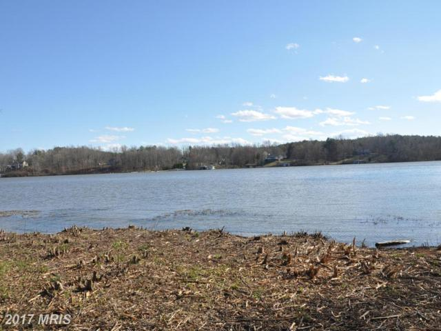 Lands End Drive, Madison Mills, VA 22960 (#OR9870980) :: Pearson Smith Realty