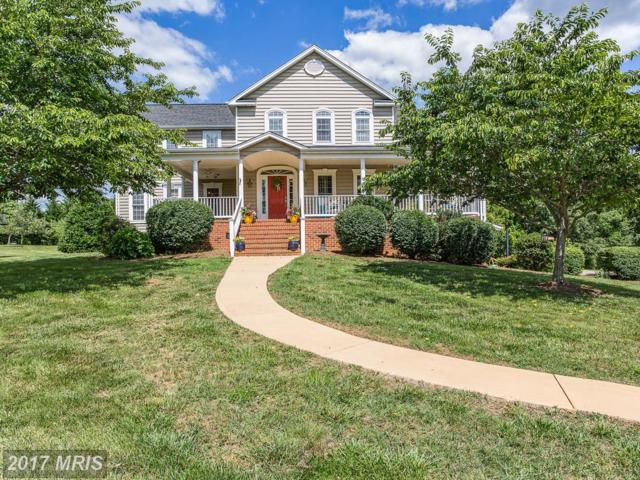 8211 Meadowland Drive, Locust Grove, VA 22508 (#OR9973289) :: Pearson Smith Realty