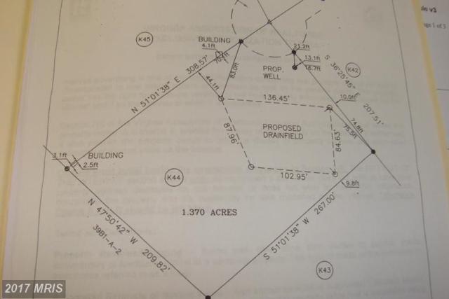 Bevs Place, Luray, VA 22835 (#PA9659993) :: Pearson Smith Realty