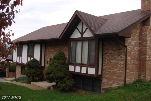 11 Nichols Road, Luray, VA 22835 (#PA9800603) :: Pearson Smith Realty