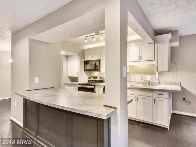7726 Hanover Parkway #198, Greenbelt, MD 20770 (#PG10124146) :: Pearson Smith Realty