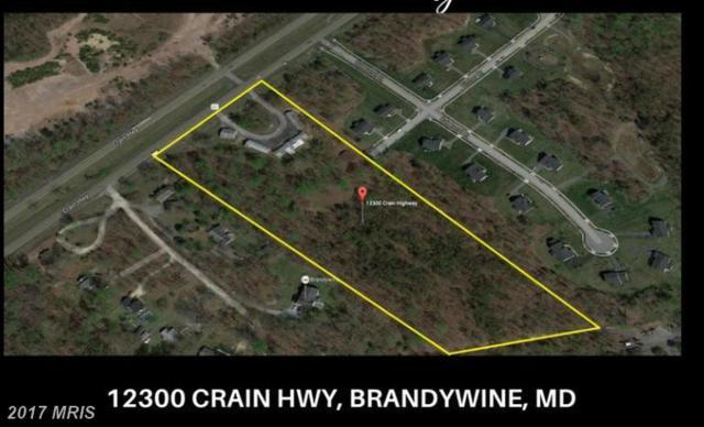 12300 Crain Highway, Brandywine, MD 20613 (#PG9816367) :: LoCoMusings