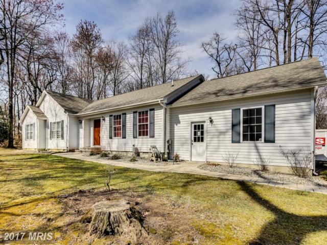 15408 Bauer Lane, Laurel, MD 20707 (#PG9894980) :: Pearson Smith Realty