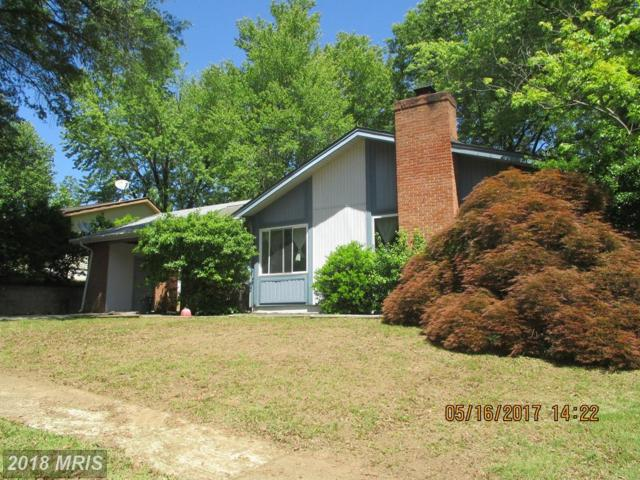 8810 Monmouth Drive, Upper Marlboro, MD 20772 (#PG9969267) :: Pearson Smith Realty