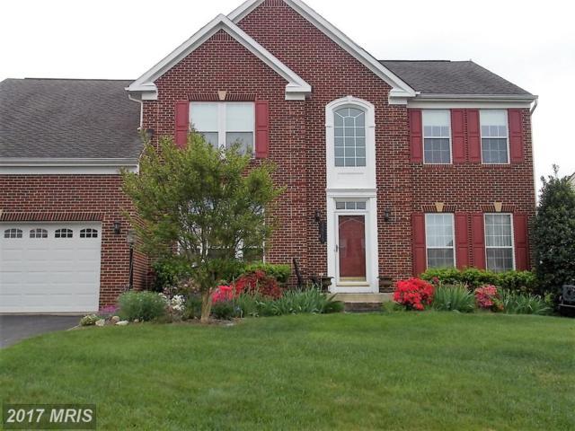 12215 Torrey Pines Terrace, Beltsville, MD 20705 (#PG9987327) :: LoCoMusings