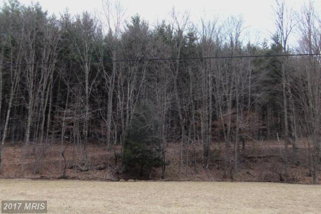 59 Snowy Creek Lane, Corinth, WV 26764 (#PR8376552) :: LoCoMusings