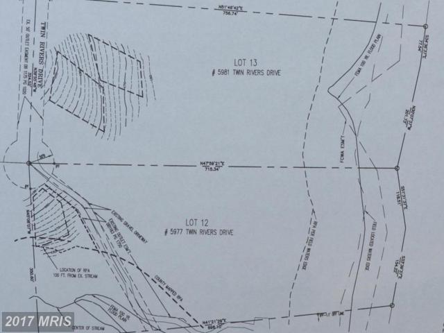 5977 Twin Rivers Drive, Manassas, VA 20112 (#PW10065272) :: LoCoMusings