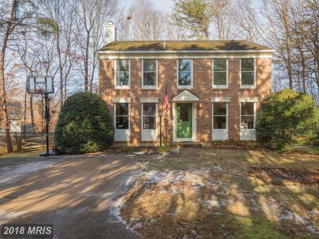 5062 Spring Branch Boulevard, Dumfries, VA 22025 (#PW10128322) :: Pearson Smith Realty
