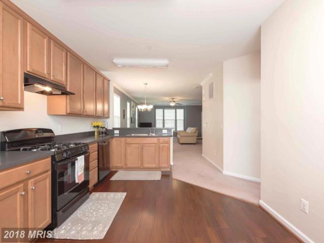 16832 Nuttal Oak Place, Woodbridge, VA 22191 (#PW10228004) :: Keller Williams Pat Hiban Real Estate Group
