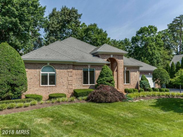 8092 Crooked Oaks Court, Gainesville, VA 20155 (MLS #PW10256009) :: Explore Realty Group
