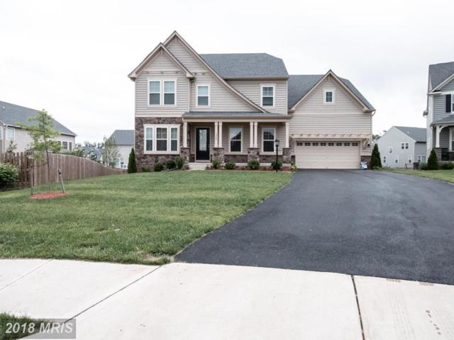 13768 Estate Manor Drive, Gainesville, VA 20155 (#PW10280589) :: Bob Lucido Team of Keller Williams Integrity