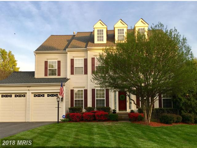 4305 Mulcaster Terrace, Dumfries, VA 22025 (#PW10281242) :: Bob Lucido Team of Keller Williams Integrity