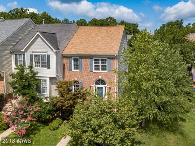 12400 Abbey Knoll Court, Woodbridge, VA 22192 (#PW9011770) :: Bob Lucido Team of Keller Williams Integrity