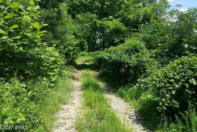 2001 Mellott Road, Woodbridge, VA 22191 (#PW9689428) :: LoCoMusings