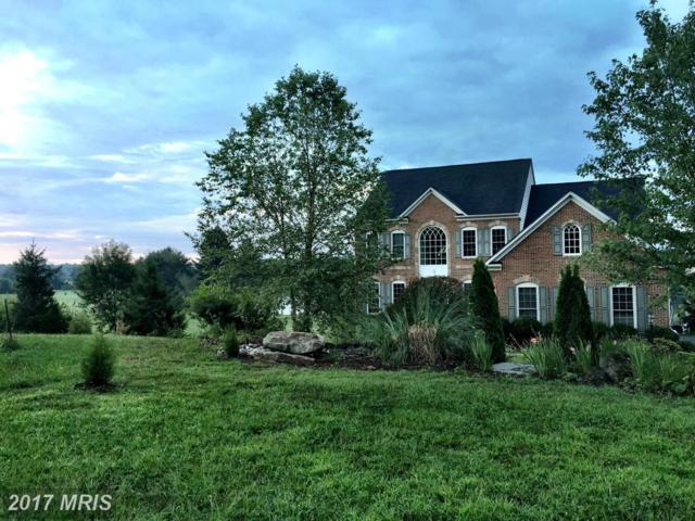 14004 Aden Road, Nokesville, VA 20181 (#PW9850547) :: Pearson Smith Realty