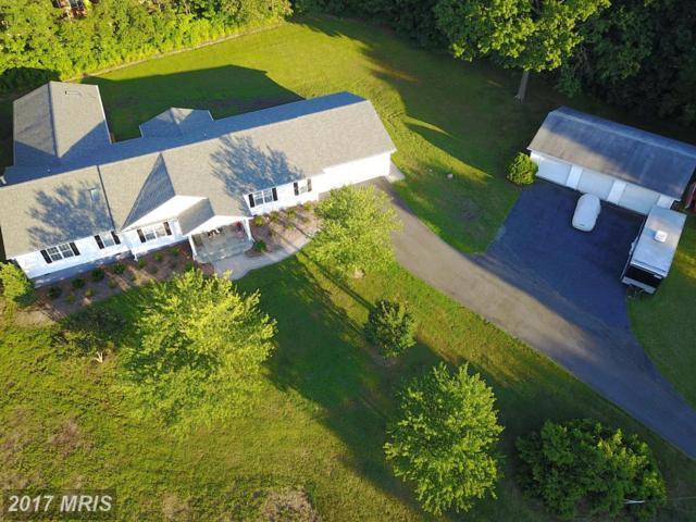 8511 Thomas Drive, Manassas, VA 20110 (#PW9968397) :: Pearson Smith Realty