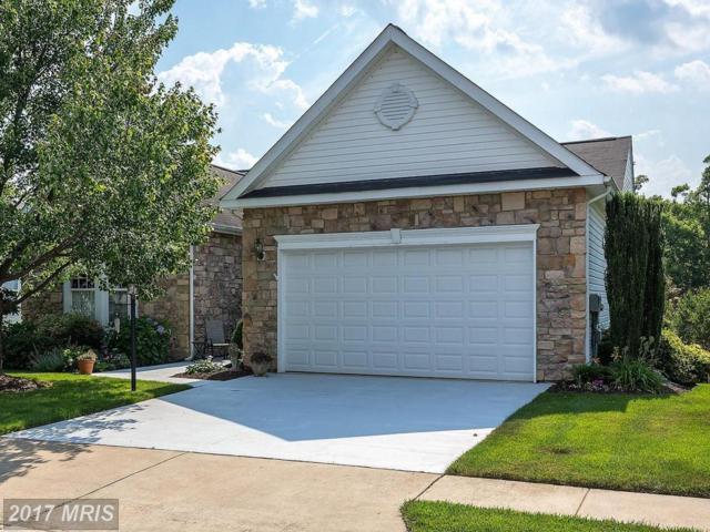 17597 Four Seasons Drive, Dumfries, VA 22025 (#PW9977355) :: Pearson Smith Realty