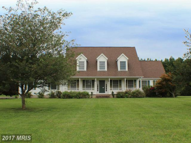 302 Claiborne Fields Drive, Centreville, MD 21617 (#QA10032396) :: Pearson Smith Realty