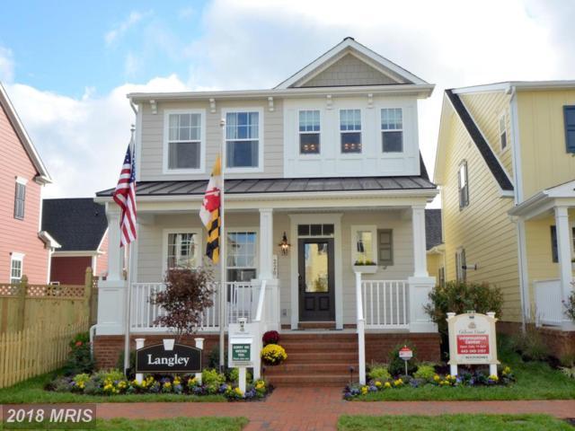 Richard Ingle, Chester, MD 21619 (#QA10106618) :: Keller Williams Pat Hiban Real Estate Group