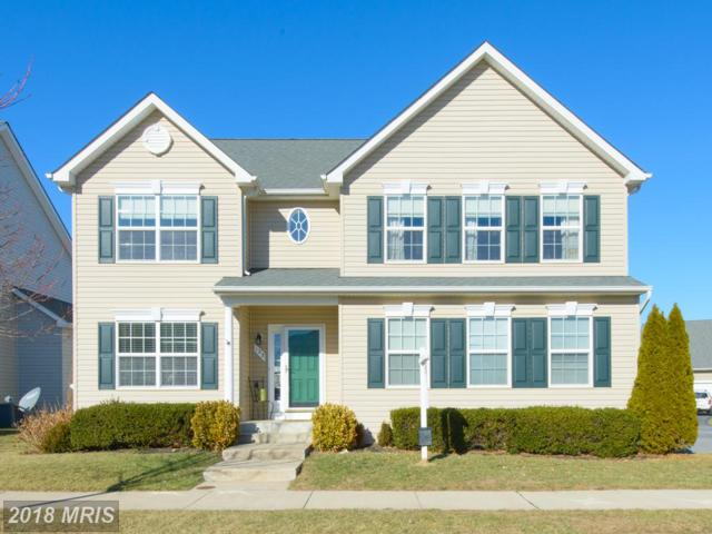 123 Alexis Avenue, Stevensville, MD 21666 (#QA10135337) :: ExecuHome Realty