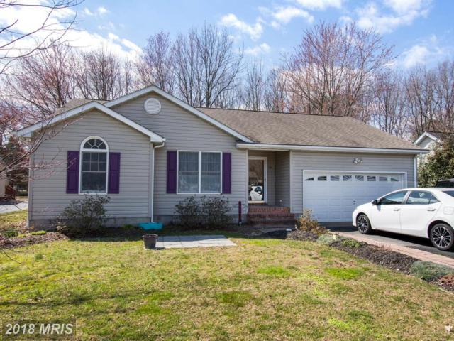 725 Old Love Point Road, Stevensville, MD 21666 (#QA10179223) :: CR of Maryland