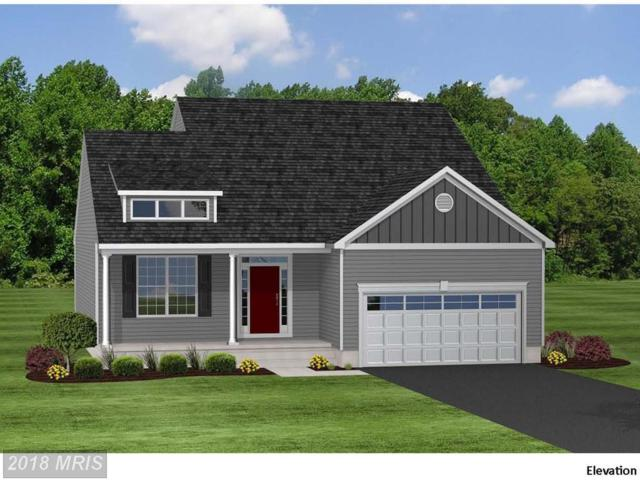 LOT 11 Fawn Lane, Grasonville, MD 21638 (#QA10251240) :: Bob Lucido Team of Keller Williams Integrity