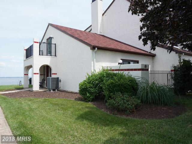 10-A Queen Elizabeth Court, Chester, MD 21619 (#QA10270177) :: RE/MAX Executives